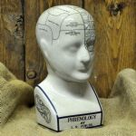 "Extra Large Phrenology Head 12"" Ceramic - Medical Student Gift Ornament"